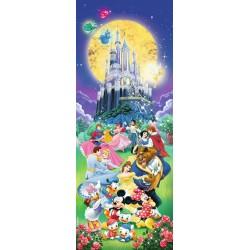 El Castillo de Disney panorama