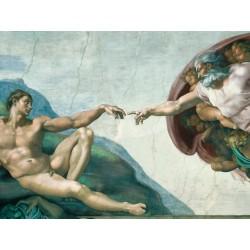 Michelangelo: La formación...
