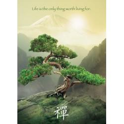 El Árbol Zen