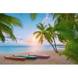 Paraíso Tropical