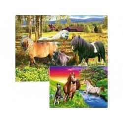 Un mundo de caballos