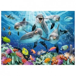 Delfines Graciosos