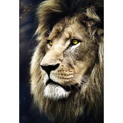 Retrato de un León