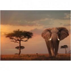 1000pz. - Elefante en el...