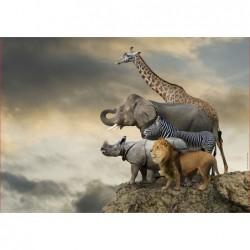 Animales al Borde del...