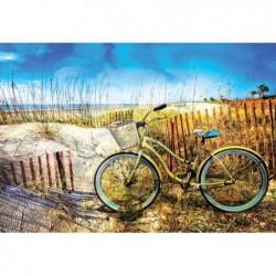 Bicicleta en las Dunas