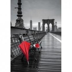 Paraguas Rojo en el Puente...