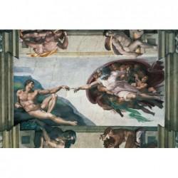Michelangelo: La Creación...