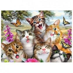 Gatitos Divertidos