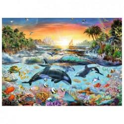El Paraíso de las Orcas
