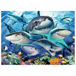 Tiburones Sonrientes
