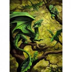 Anne Stokes: Nido de Dragones