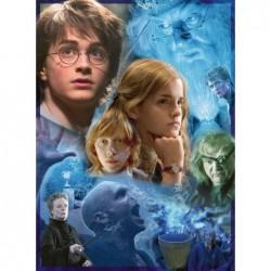 500pz. - Harry Potter: Un...