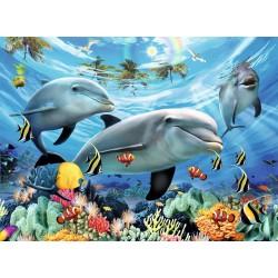 Paraiso de Delfines