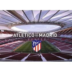 1000pz. - Estadio del...