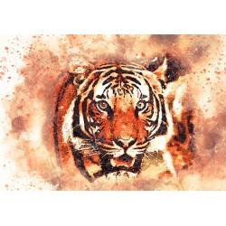 300pz. - El Tigre