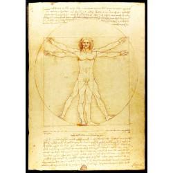 500pz. - Leonardo Da Vinci:...
