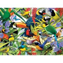 1000pz. - 3D Puzzle: Aves...