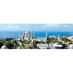 1000pz. - La Mezquita del...