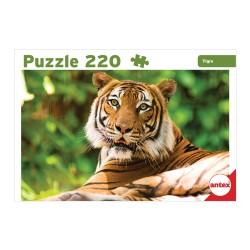 220pz. - Tigre