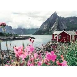1000pz. - Lofoten, Noruega