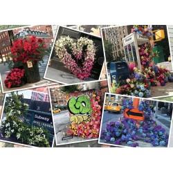 1000pz. - Flores de Nueva York