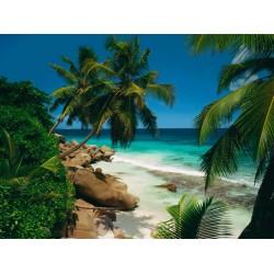 2000pz. - Playa de Seychelles