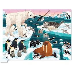 72pz. - Animales del Ártico
